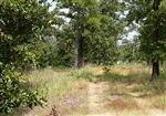 Oklahoma, Pushmataha County, 5.73 Acre Lake View Private Reserve. TERMS $410/Month