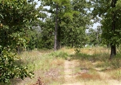 Oklahoma, Pushmataha County, 8.1 Acre Lake View Private Reserve. TERMS $510/Month