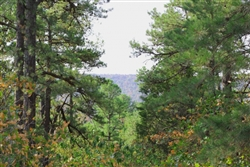 Oklahoma, Pushmataha County, 20.2 Acre Trophy Ridge. TERMS $325/Month