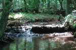 Tennessee, Wayne County, 14.65  Acre Sugartree Falls. TERMS $650/Month