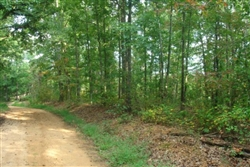 Tennessee, Wayne County, 9.63  Acre Sugartree Falls. TERMS $410/Month.