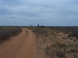 Texas, Cochran County, 1 Acre Western Vistas. TERMS $50/Month