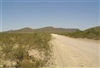 Texas, Hudspeth County, 20 Acre Sunset Ranches. TERMS $125/Month