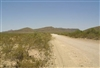 Texas, Hudspeth County, 25 Acre Sunset Ranches, Lot 11. TERMS $160/Month