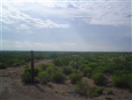 Texas, Reeves County, 56 Acres. TERMS $480/Month