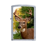Zippo Lighter - Buck Street Chrome - 854059