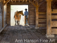 The Light of Day by Ann Hanson