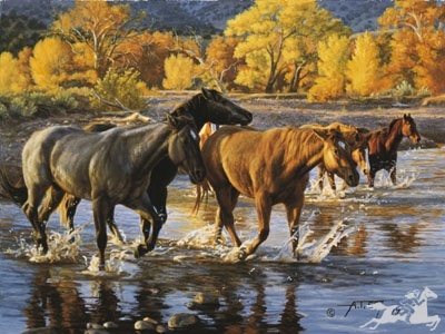 Horses of the Creek by Tim Cox