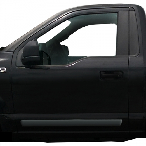 Ford F150 Painted Body Side Moldings 2015 2016 2017