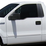 Ford F150 Painted Body Side Molding, 2009, 2010, 2011, 2012, 2013, 2014