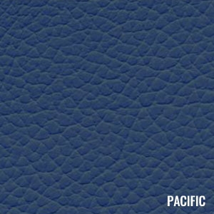 Katzkin Color Pacific