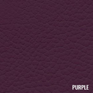 Katzkin Color Purple
