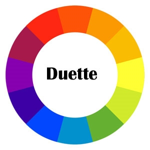 Duette Honeycomb Fabric & Color