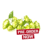 Early Choice Bare Root Hop Plant (Pre-Order)
