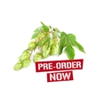 Galena Bare Root Hop Plant (Pre-Order)