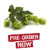 Perle Bare Root Hop Plant (Pre-Order)