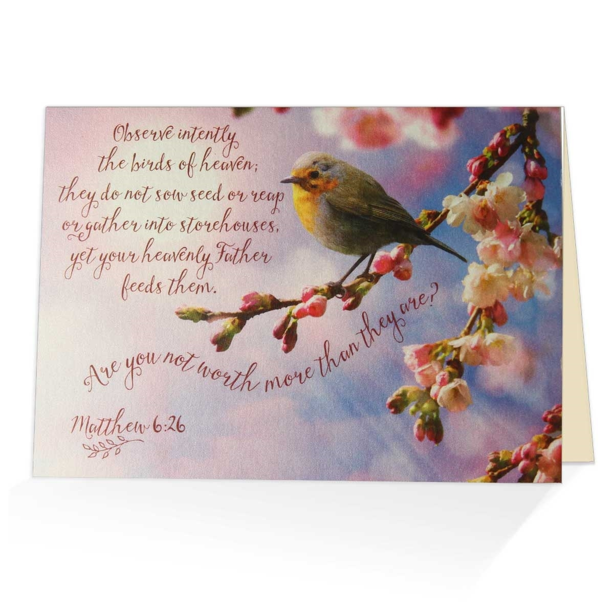 Matthew 626 Greeting Card Biblical Encouragement Card