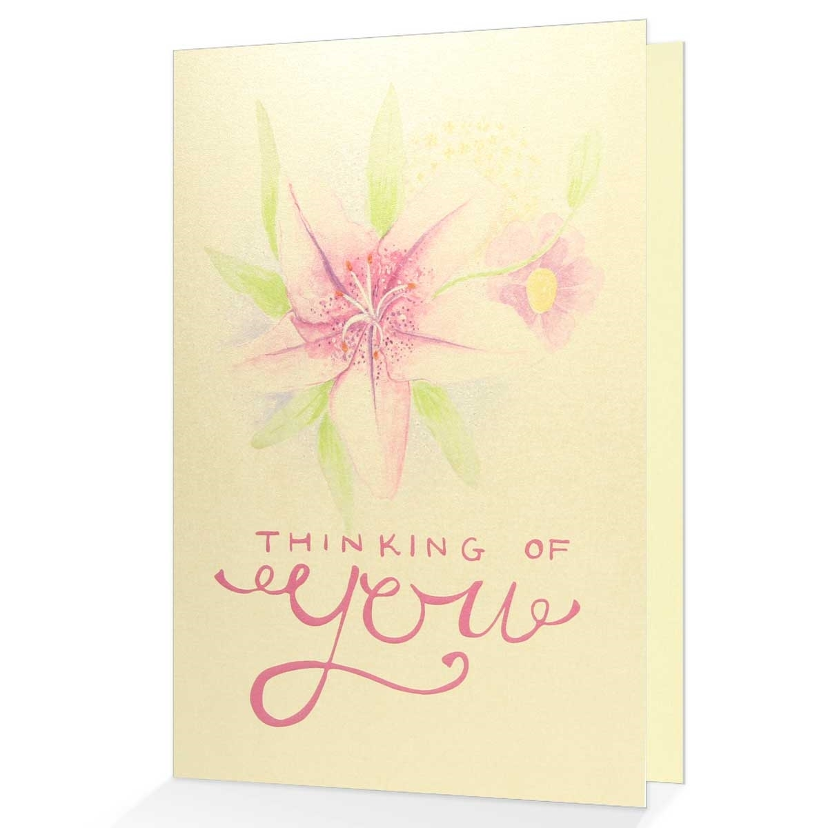 Sympathy card thinking of you view larger photo email m4hsunfo