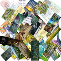 Bible Reading Schedule bookmark Set of 8 Features the 2021 yeartext