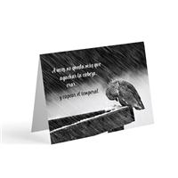 Tarjetas Postales Espirituales Para Testigos De Jehova