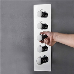Four Function Chrome Diverter Shower Controller Mixer