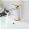 Naples Bathroom Sink Faucet with Chrome & Gold Finish