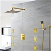 Ancona Wall Mounted Gold Finis Shower Head with Body Massage Jets