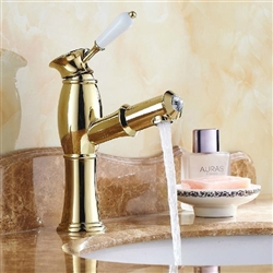 Olbia Gold Finish Bathroom Faucet with Pull out Tube