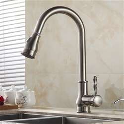 Luna Goose Neck Single Handle Kitchen Sink Faucet With Hot Cold Water Mixer & Cover Plate