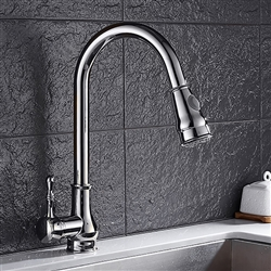 Rio Brushed Nickel Finish Goose Neck Single Handle Kitchen Sink Faucet With Hot Cold Water Mixer & Cover Plate
