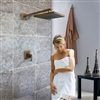 Rema Antique Brass Shower Set