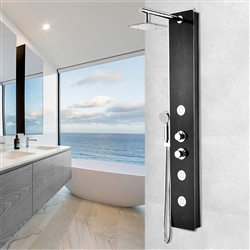 Shower Panel System with Heavy Rain Shower and Spray Wand in Black Deco-Glass