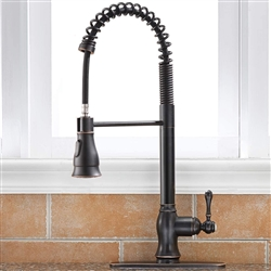 Turin Kitchen Faucet Single Handle With Faucet Coverage Plate Bronze, Brushed, Chrome