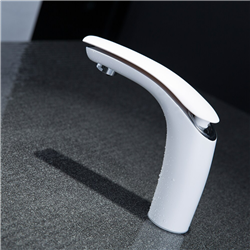 Rio Rouge Temperature Controlled Faucet