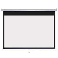 Braun Projector-Screen Wall-mount Pull-down 200x150 cm (13805)