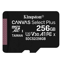 Kingston MicroSDXC 256GB - UHS-I Class 1 / Class 10 with adapter SDCS2/256GB