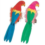 Feathered Parrot, 12 inch (1/pkg)