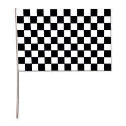 Plastic Racing Flag (11 in x 17 in)