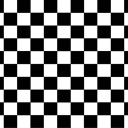 Black and White Checkered Backdrop