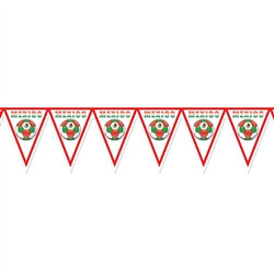 Mexico Soccer Pennant Banner