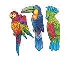 Exotic Bird Cutouts