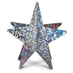 Silver 3-D Prismatic Star Centerpiece