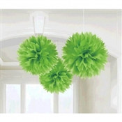 Kiwi Fluffy Tissue Decoration