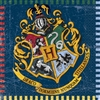 "The Harry Potter Luncheon Napkins are made of 2-ply paper and measure 6 1/2 inches by 6 1/2 inches. Colorfully printed with the Hogwarts logo and reads ""Draco Dormiens Nunquam Titillandus"" meaning ""Never tickle a sleeping dragon. Contains (16) per package"