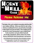 Horny As Hell Card Pocket Cards