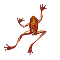 Eangee Home Design Wall Frog Large (m412023)