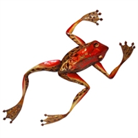 Eangee Home Design Wall Frog Small (m412022)