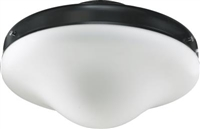 Quorum WET CFL LK W/ Opal- Matte Black