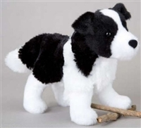 Meadow border collie