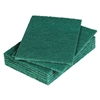 Heavy Duty Scouring Pads, 10 Pack